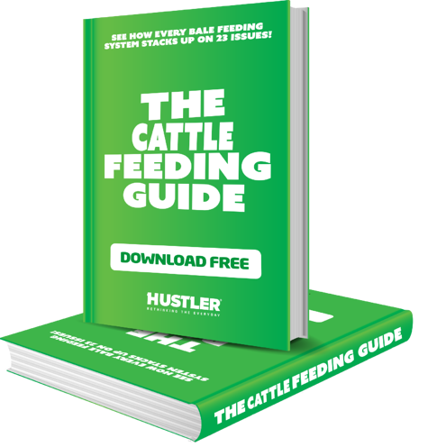 cattle feeding guide new green