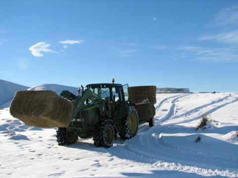 IMG_0280_(480_x_360)Tractor_in_snow.jpg